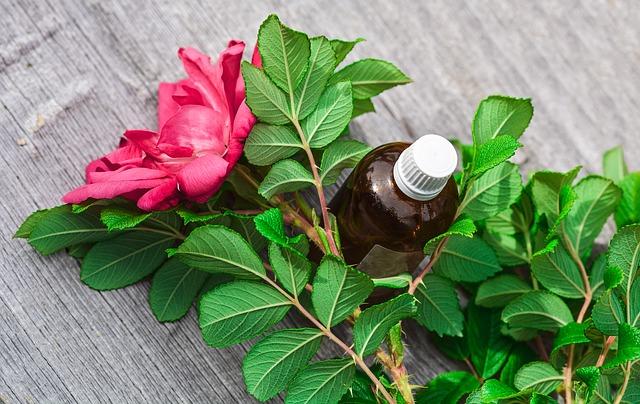 Olejki roślinne są często składnikiem skutecznych naturalnych maści na trądzik.
